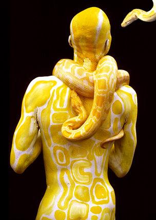 Snakes_lightbox