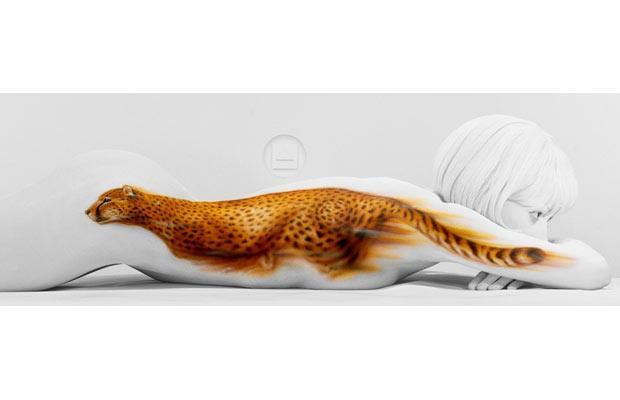 cheetah_1514663i